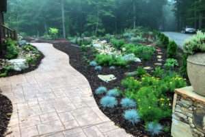 Stormwater management at its finest with landscaped rainwater garden.
